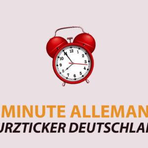 Denglisch Anglicismes à l'allemande par Waltraud Schleser (DFG Duisburg)
